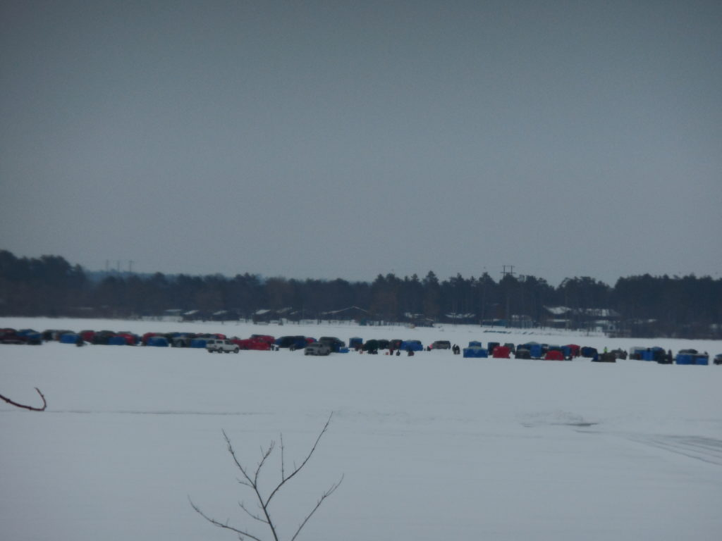 just under 500 fishermen at the cass lake chamber challenge
